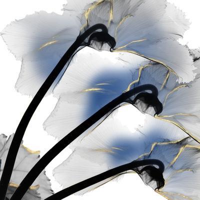 https://imgc.artprintimages.com/img/print/indigo-luster-cyclamen_u-l-q1bcghh0.jpg?p=0