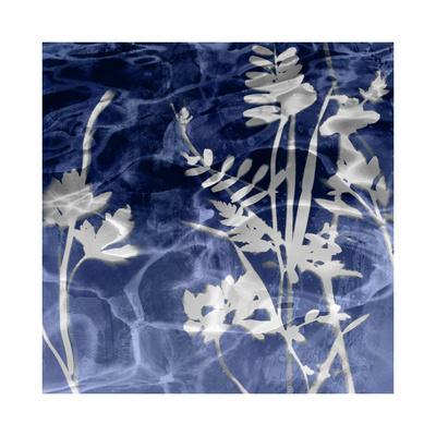 https://imgc.artprintimages.com/img/print/indigo-nature-i_u-l-f8veef0.jpg?p=0