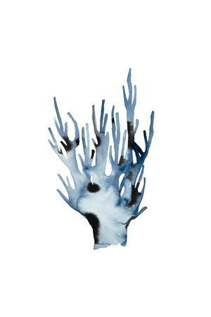 https://imgc.artprintimages.com/img/print/indigo-sea-1_u-l-q1bmzp30.jpg?p=0