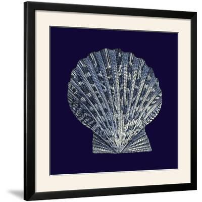 Indigo Shells VIII-Vision Studio-Framed Photographic Print