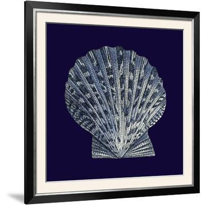 Indigo Shells VIII-Vision Studio-Framed Photographic Print