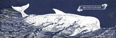 Indigo Whale I-Gwendolyn Babbitt-Art Print