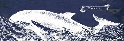 Indigo Whale II-Gwendolyn Babbitt-Art Print
