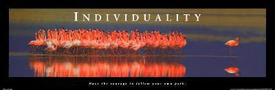 Individuality: Flamingos--Art Print