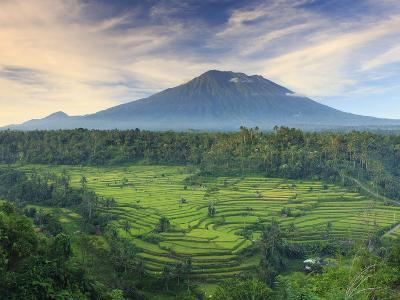 Indonesia, Bali, Redang, View of Rice Terraces and Gunung Agung Volcano-Michele Falzone-Photographic Print