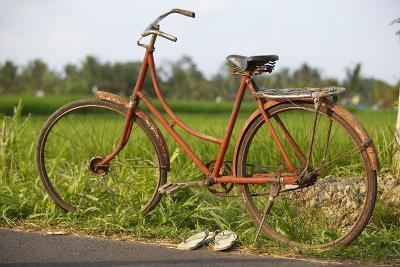 Indonesia, Bali, Ubud, Vintage Bike in Front of Rice Fields-Design Pics Inc-Photographic Print