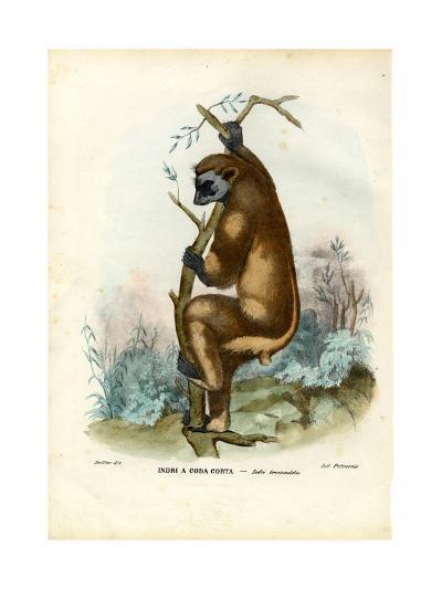 Indri, 1863-79-Raimundo Petraroja-Giclee Print