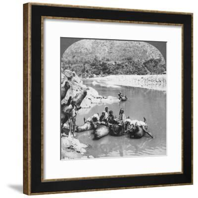Inflated Bullock Skins Used as Ferry Boats on the Sutlej River, Punjab, India, C1900s--Framed Photographic Print