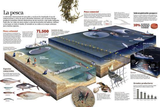 Infografía De Las Diversas Técnicas De Pesca Artesanal Y Comercial--Poster