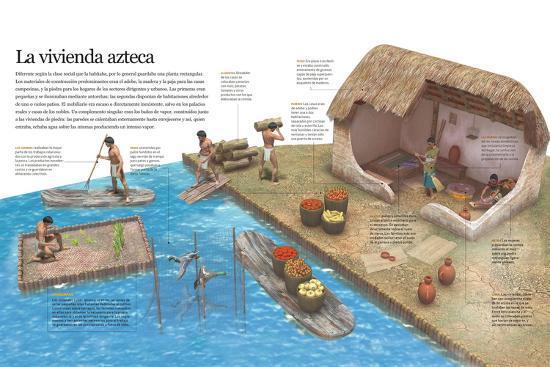Infografía Del Modo De Vida De Los Aztecas En Su Entorno Cotidiano Y De Su Vivienda--Poster