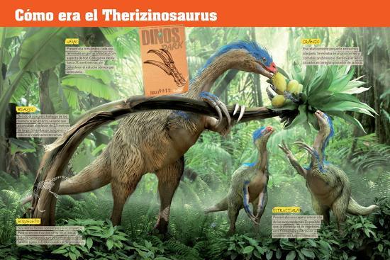 Infografía Del Terizinosaurio, Saurópodo Herbívoro Del Cretácico, Era Mesozoica--Poster