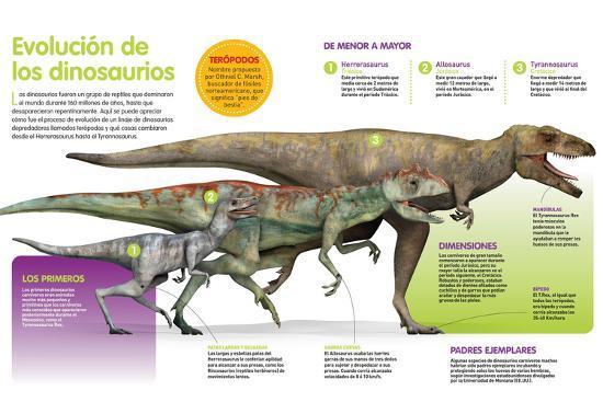 Infografía Que Muestra La Evolución De Los Dinosaurios a Lo Largo De La Era Mesozoica--Poster