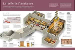 Infografía Sobre El Descubrimiento De La Tumba De Tutankamón, Joven Faraón