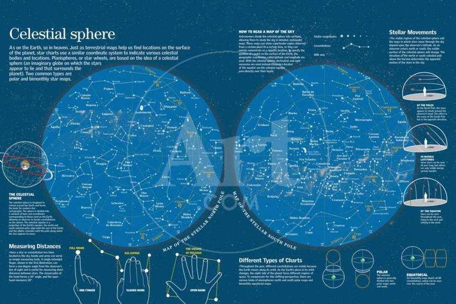 Infographic About North And South Pole Celestial Maps Where Star - How to read a star map