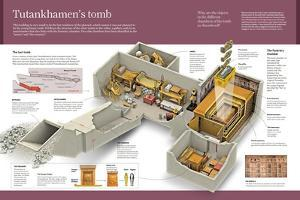 Infographic About the Discovery of Tutankhamen's Tomb, a Young Pharaoh Who Died in 1327 BC