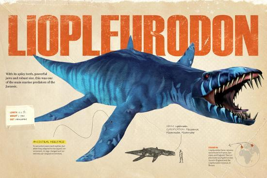 Infographic About the Liopleurodon, a Marine Predator from the Jurassic Period--Poster