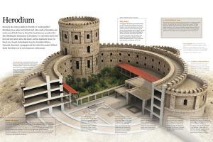 Infographic of Herodium, Constructed by Herod the Great, Jerusalem in the I Century B.C
