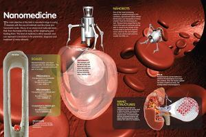 Infographic of Nanomedicine, Used to Diagnose, Prevent and Cure at the Molecular Level