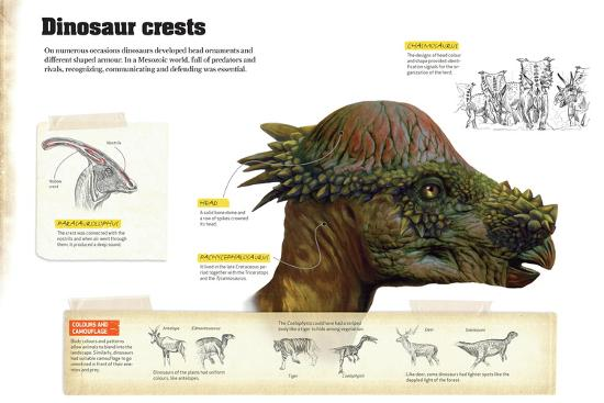 Infographic That Describe Different Types of Dinosaur Crests That Were Used to Communicate--Poster