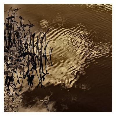 Infrared Pond 8-Jean-Fran?ois Dupuis-Art Print