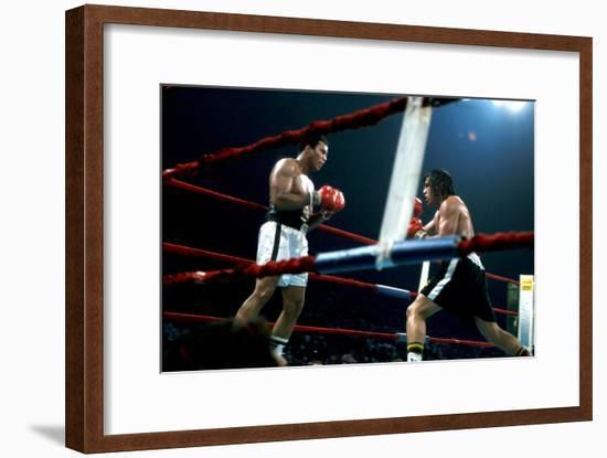 Ing Game Between Mohammed Ali and Alfredo Evanglista in Washington May 16, 1977--Framed Photo