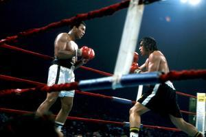 Ing Game Between Mohammed Ali and Alfredo Evanglista in Washington May 16, 1977