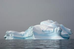 Antarctica. Charlotte Bay. Iceberg by Inger Hogstrom