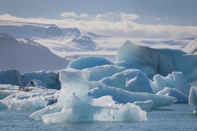 Iceland. East Region. Jokulsarlon. Glacial Lake. Icebergs in the Lake by Inger Hogstrom