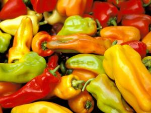 Peppers, Ferry Building Farmer's Market, San Francisco, California, USA by Inger Hogstrom