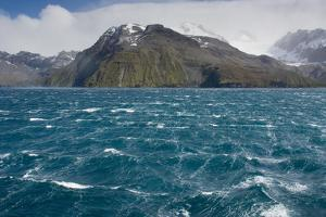 South Georgia. Fortuna Bay. Katabatic Winds of Estimated 7 by Inger Hogstrom
