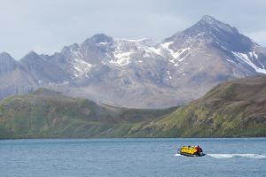 South Georgia. Zodiac with Tourists Makes its Way Back to the Ship by Inger Hogstrom