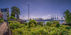 Germany, Hamburg, Elbe (River), …velgšnne, Elbwanderweg by Ingo Boelter