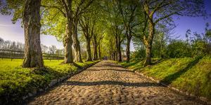 Germany, Schleswig-Holstein, Kappeln, Manor by Ingo Boelter