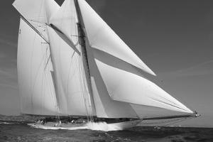 Navigation I by Ingrid Abery
