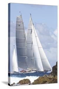 Noble Sail by Ingrid Abery