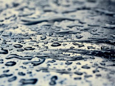 Rain by Ingrid Beddoes