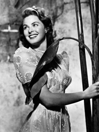 Ingrid Bergman victoria