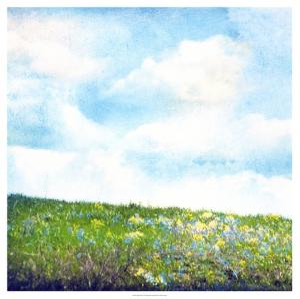 Bright Field I by Ingrid Blixt