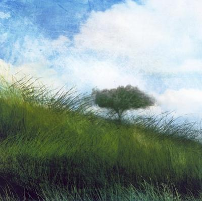 Bright Field IV by Ingrid Blixt