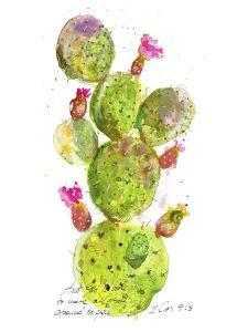 Cactus Verse III by Ingrid Blixt