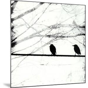 Silver Days I by Ingrid Blixt