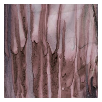 Ink 15-Tracy Hiner-Premium Giclee Print