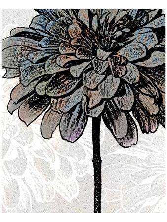 https://imgc.artprintimages.com/img/print/ink-zinnia-ii_u-l-f74jka0.jpg?p=0