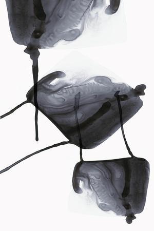 https://imgc.artprintimages.com/img/print/inked-ii_u-l-q1bj7te0.jpg?p=0