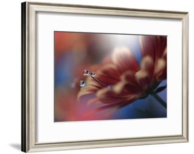 Inmost-Juliana Nan-Framed Giclee Print
