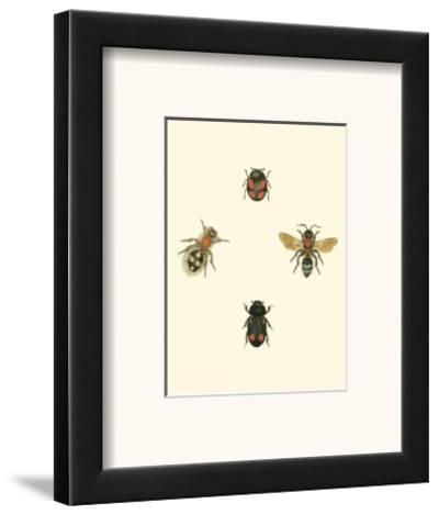 Insecte I--Framed Art Print
