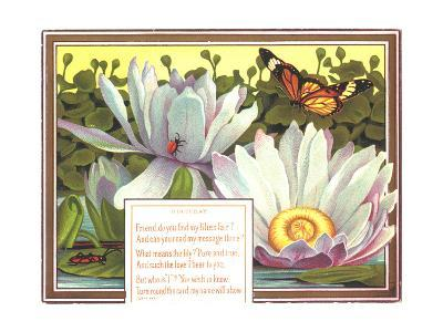 Insects with Water Lilies--Art Print