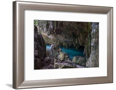 Inside A Cenote Pet Cementery, Tulum Riviera Maya, Traveling Mexico.-diegocardini-Framed Photographic Print