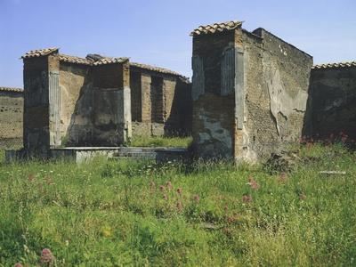 https://imgc.artprintimages.com/img/print/inside-great-market-and-macellum-pompeii-campania_u-l-poyhe50.jpg?p=0