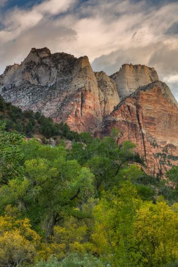 Inside Zion Canyon-Vincent James-Photographic Print